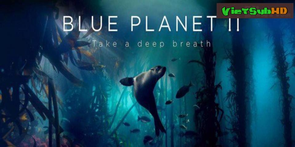 Phim Hành Tinh Xanh 2 VietSub HD | Blue Planet II 2017
