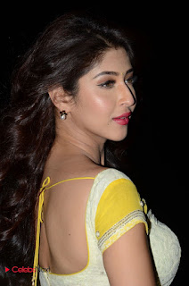 Actress Sonarika Bhadoria Stills in Yellow Saree  0097