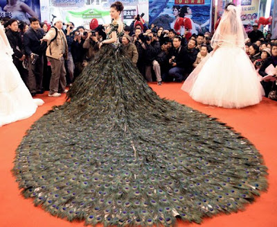 Vestido con plumas de Pavo Real
