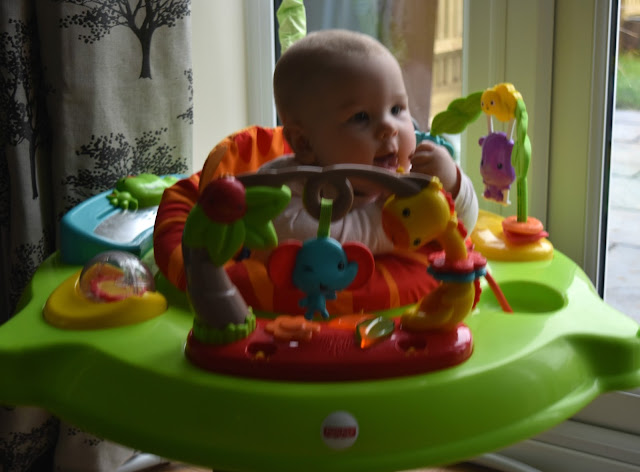 Fisher Price Roarin' Rainforest Review