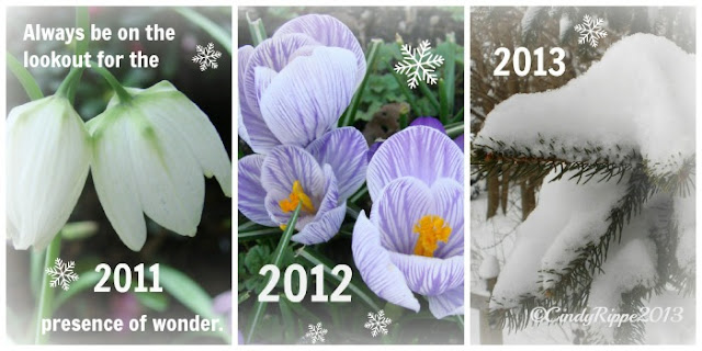 Fritillaria meleagris,purple striped crocus, snow on pine branches, E.B.White quote about Wonder, Spring in the Garden, Snow in Spring, Florals-Family-Faith, Cindy Rippe