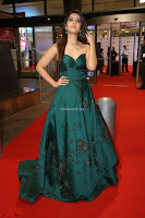 Raashi Khanna in Dark Green Sleeveless Strapless Deep neck Gown at 64th Jio Filmfare Awards South ~  Exclusive 150.JPG