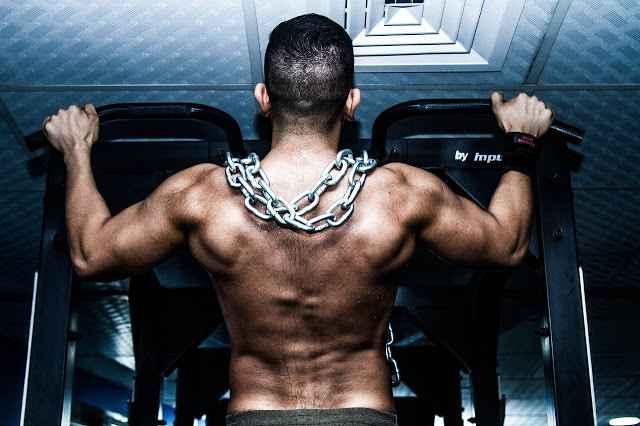 Body Building Anatomy ~ Daily Blogger