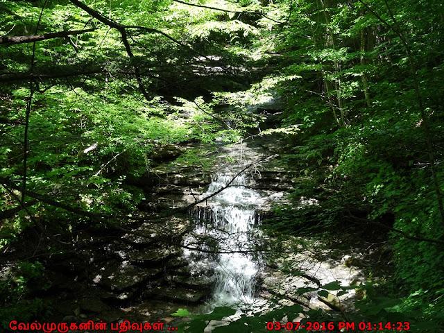 Pixley Falls Hike NY