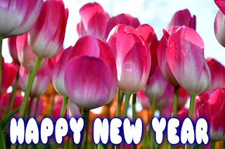 happy new year quotes on images