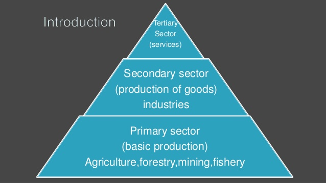 primary sector in india