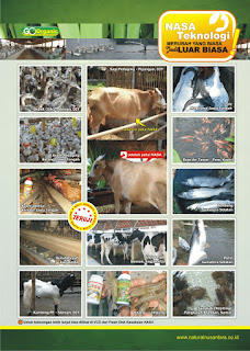 manfaat viterna plus, fungsi viterna, fungsi viterna plus, kandungan viterna, kegunaan viterna, manfaat viterna plus