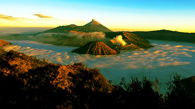 bromo ijen tour from surabaya, bromo ijen tour from bali, travel to bromo and kawah ijen, trip to bromo, travel bromo, ijen crater, ijen crater tours, ijen Tour Package, kawah ijen tours, ijen tour and travel banyuwangi, ijen volcano tour, ijen volcano Indonesia, ijen volcano from banyuwangi, ijen travel, kawah ijen banyuwangi, kawah ijen tour, kawah ijen trip, ijen crater tour, ijen crater blue fire, ijen crater guesthouse, ijen crater tour from banyuwangi, ijen crater tour bali, ijen crater tour price, ijen crater night tour, kawah ijen night, ijen blue fire, bluefire ijen crater, blue fire ijen tour , blue fire kawah ijen, ijen blue flame tour, blue flame gunung ijen, blue flame sulphur ijen, blue flame gunung ijen, blue flame kawah ijen volcano.