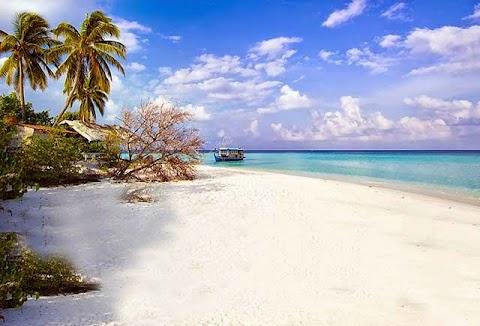 Travel Wisata Pulau Harapan