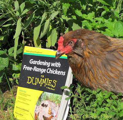 Gardening with Free Range Chickens for Dummies book Giveaway