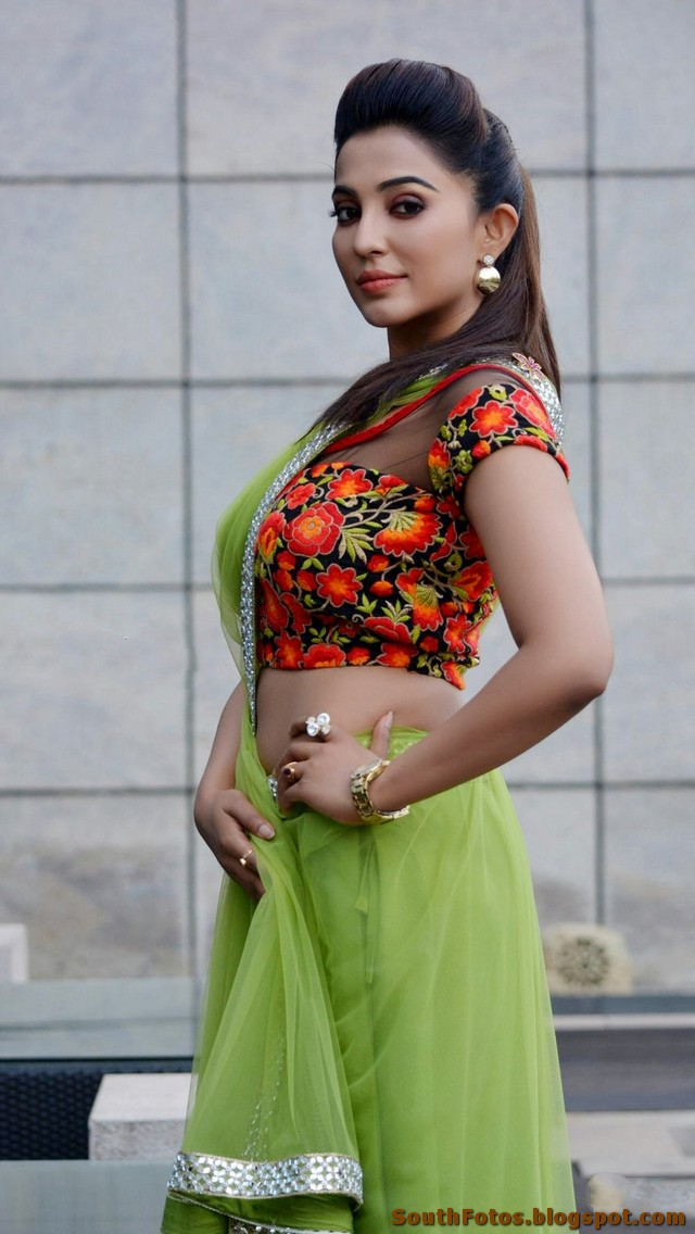 Parvathy Nair Hot in Saree Wallpapers