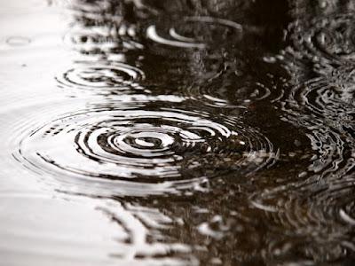 雨のイメージ写真