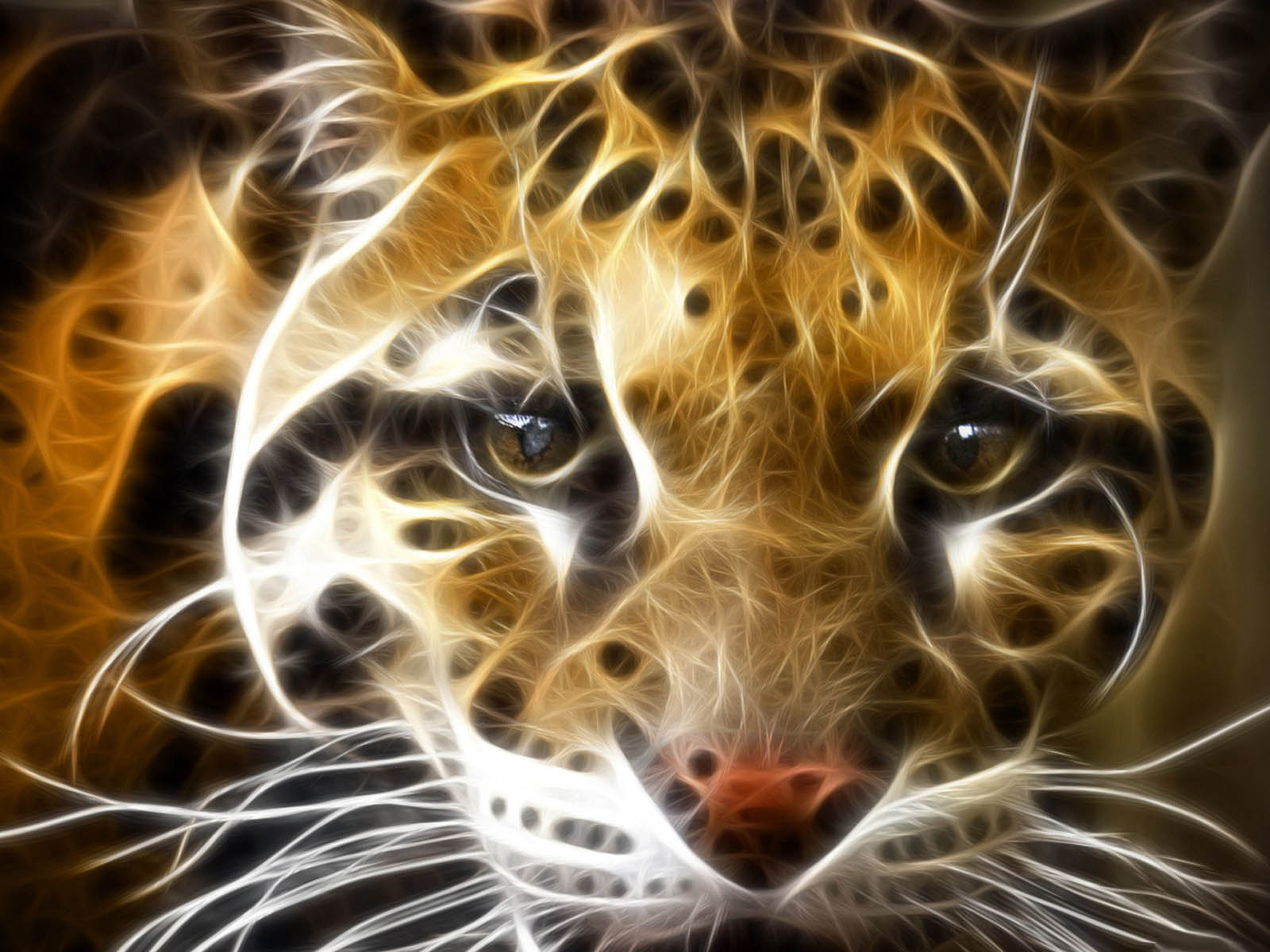 wallpapers: Tiger 3D Wallpapers