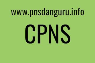 Info Syarat Perekrutan PNS Tahun 2017