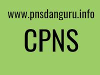 CPNS Kemendikbud Prioritaskan Posisi Guru Garis Depan