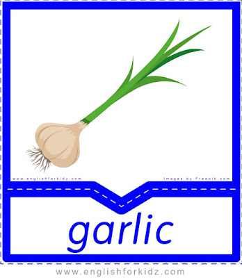 Garlic - English flashcards for the fruits and vegetables topic