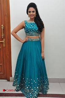 Sree Mukhi Pictures at Gentleman Audio Launch  0133