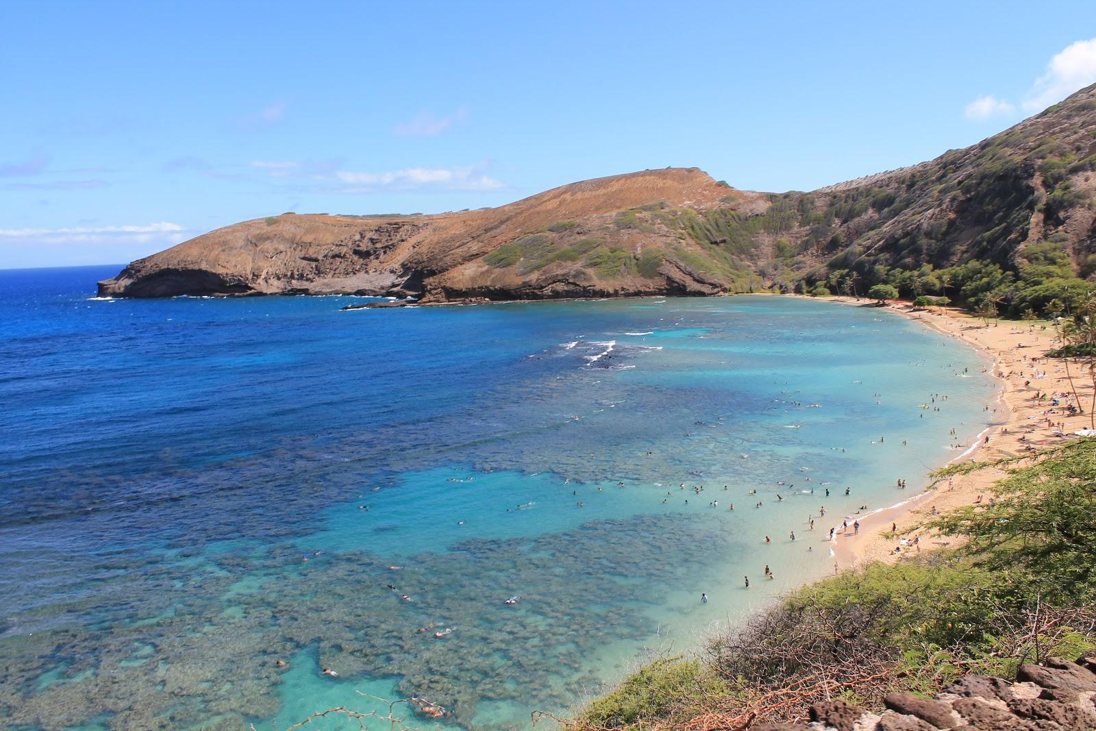 Contea Di Honolulu Hawaii i miei viaggi low cost: 2012