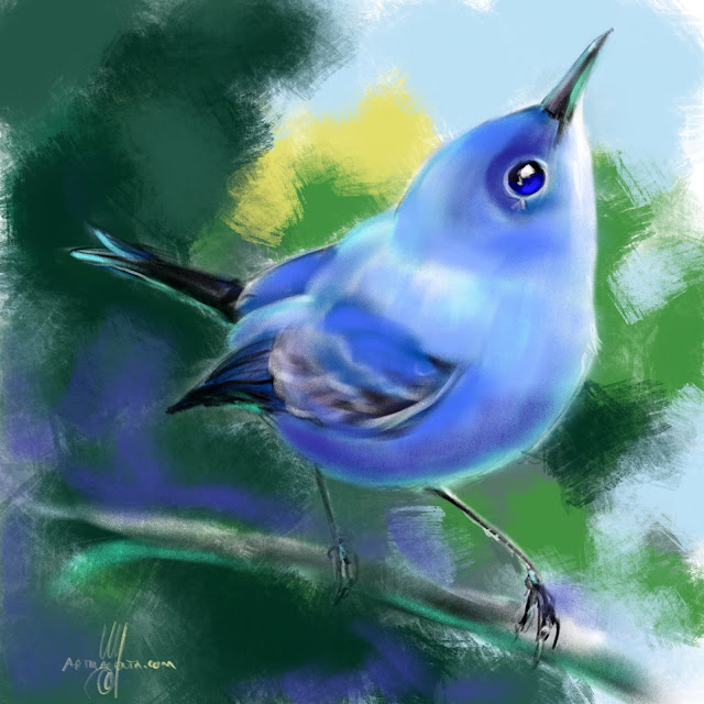 Blue-gray gnatcatcher bird painting by Artmagenta