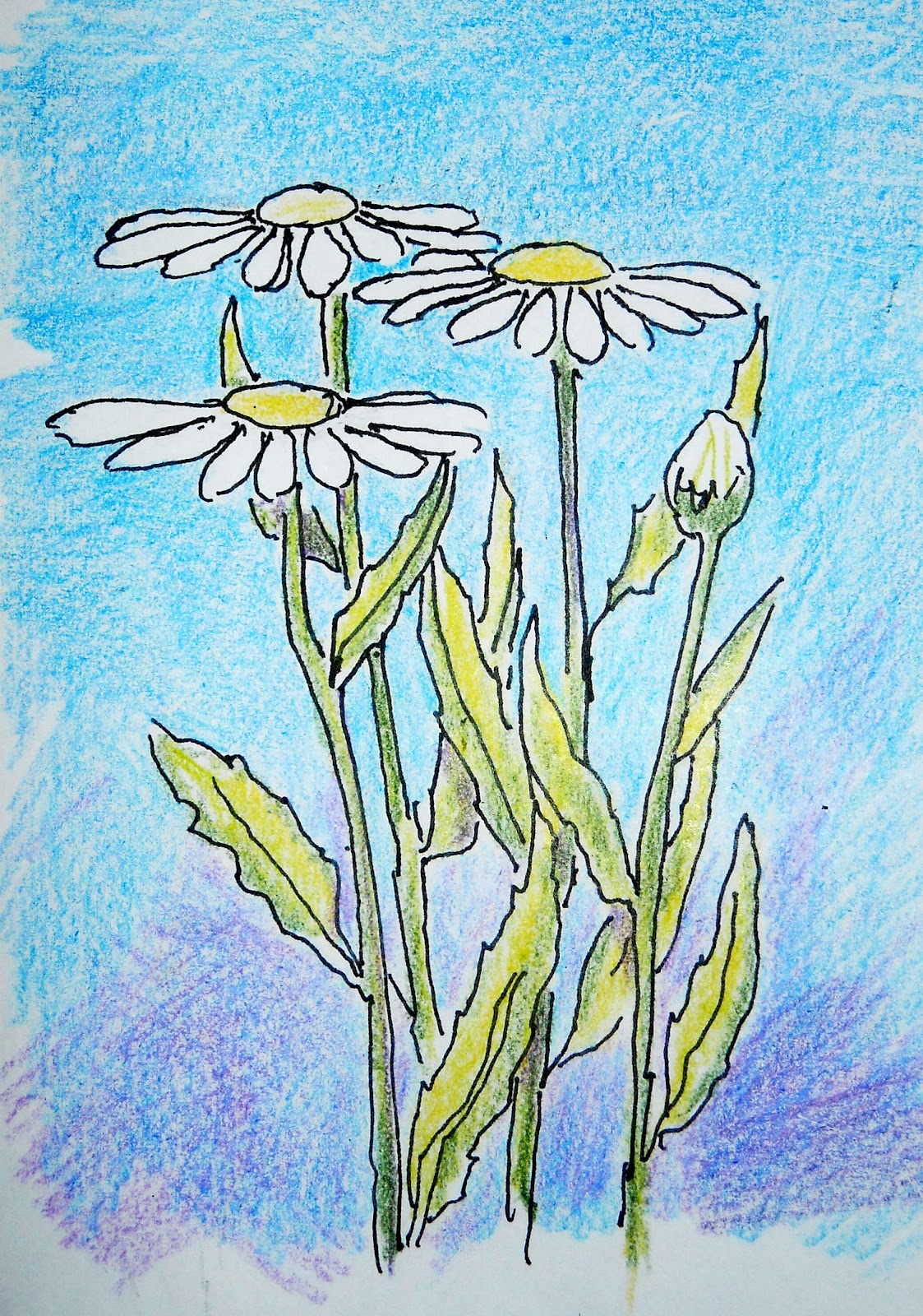 How to Draw Worksheets for The Young Artist: How to Draw Daisies ...