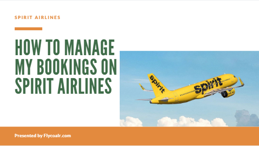 manage my booking on Spirit Airlines