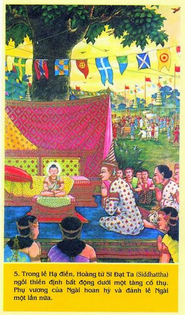 56. Kinh Ưu-ba-ly - Kinh Trung Bộ - Đạo Phật Nguyên Thủy