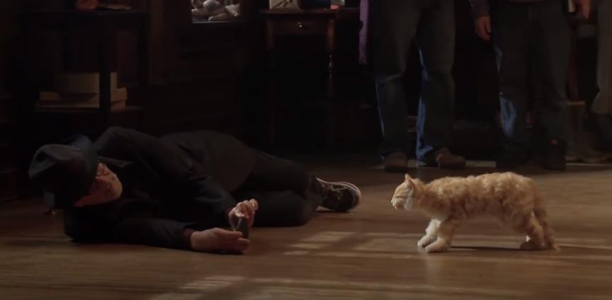 1 - Steven Spielberg with cat