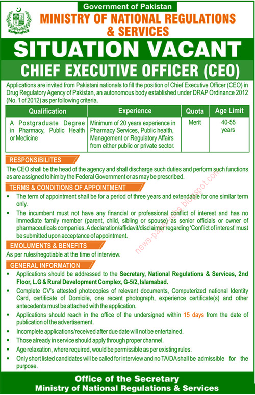 Career Opportunities for Chief Executive Officer