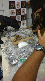 Canil da Guarda Municipal de Jundiaí localiza quase 12 quilos de drogas em viela no São Camilo