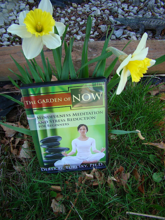 Mindfulness Meditation And Stress Reduction For Beginners DVD Review ~ Dr. Derek G. Turesky ~ The Garden Of Now