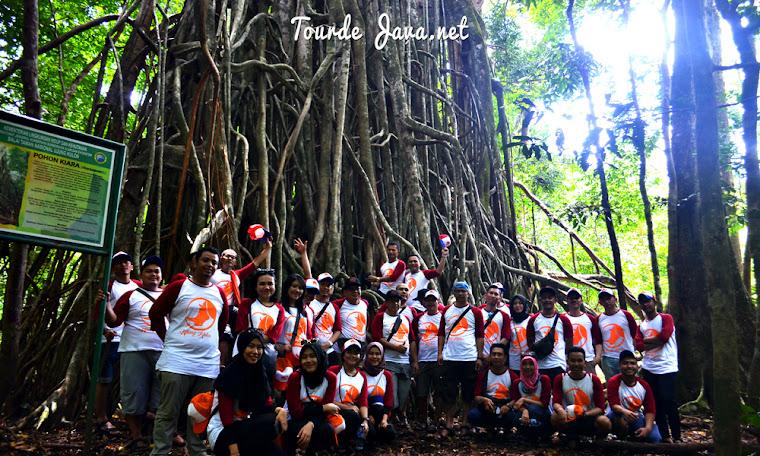 aktivitas wisata trekking pulau peucang ujung kulon banten