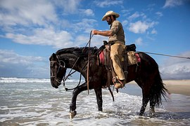 Apa Itu Manfaat Olahraga Berkuda