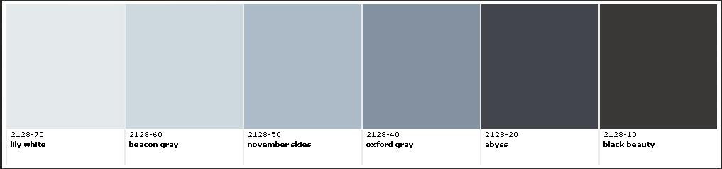 Dove Gray Color Paint