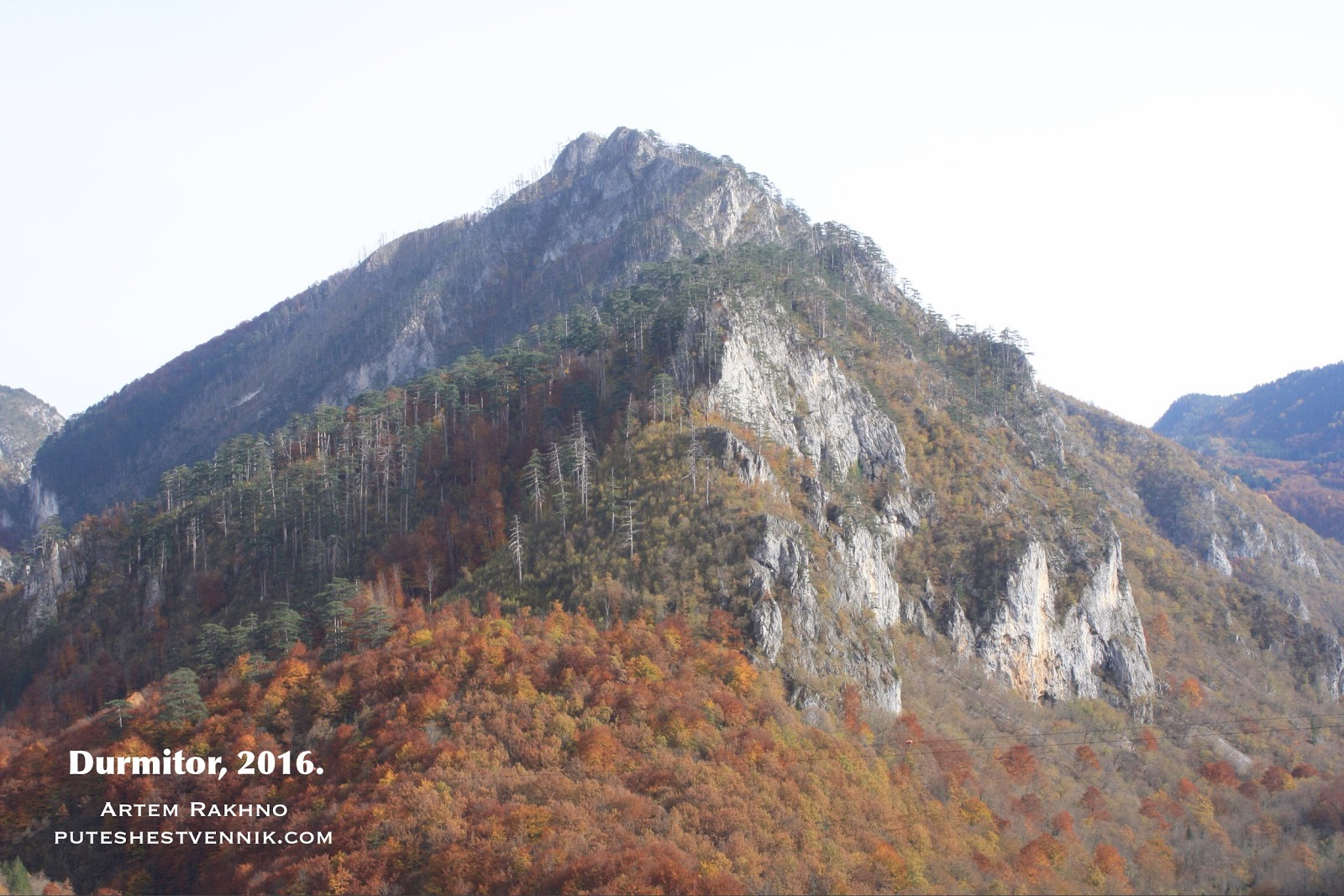 Гора и лес