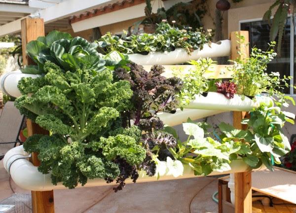 Jardines verticales caseros y reciclados for Jardin vertical pequeno
