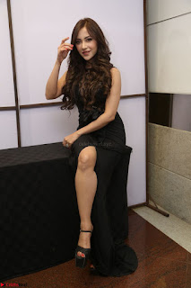 Angela Krislinzki in Transparent Black Gown at Rogue Movie Teaser Launch 1st March 2017 075.JPG
