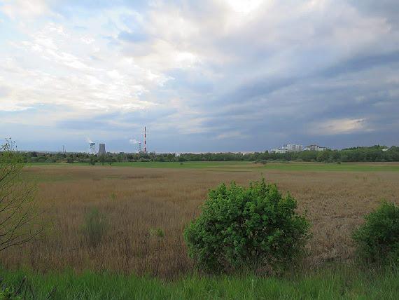 Łąki Nowohuckie.