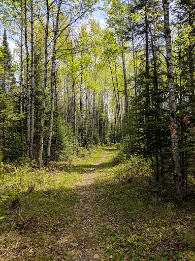 North Country Trail Brule Bog