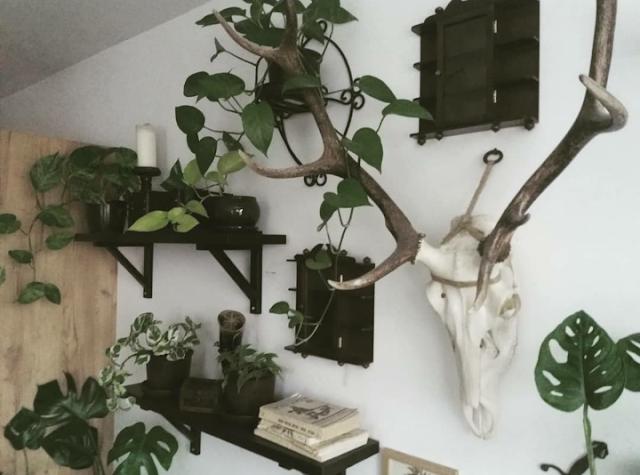 jak urządzić mieszkanie vintage