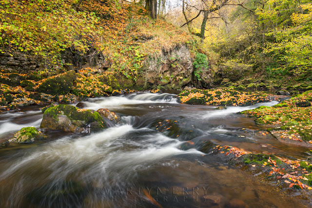 The Afon Mellte courses through woodland in the Vale of Neath by Martyn Ferry Photography