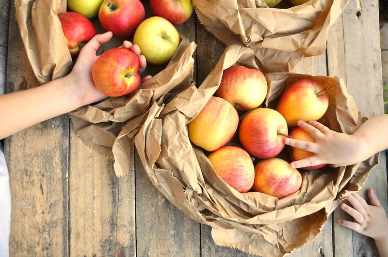 5 Alimenti Utili per il Sistema Immunitario