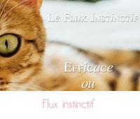 flux instinctif