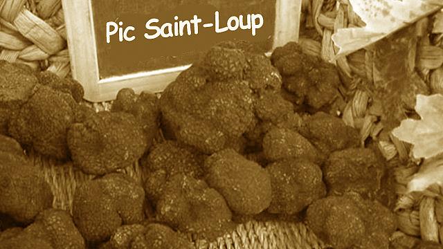 Truffes du Pic-Saint-Loup