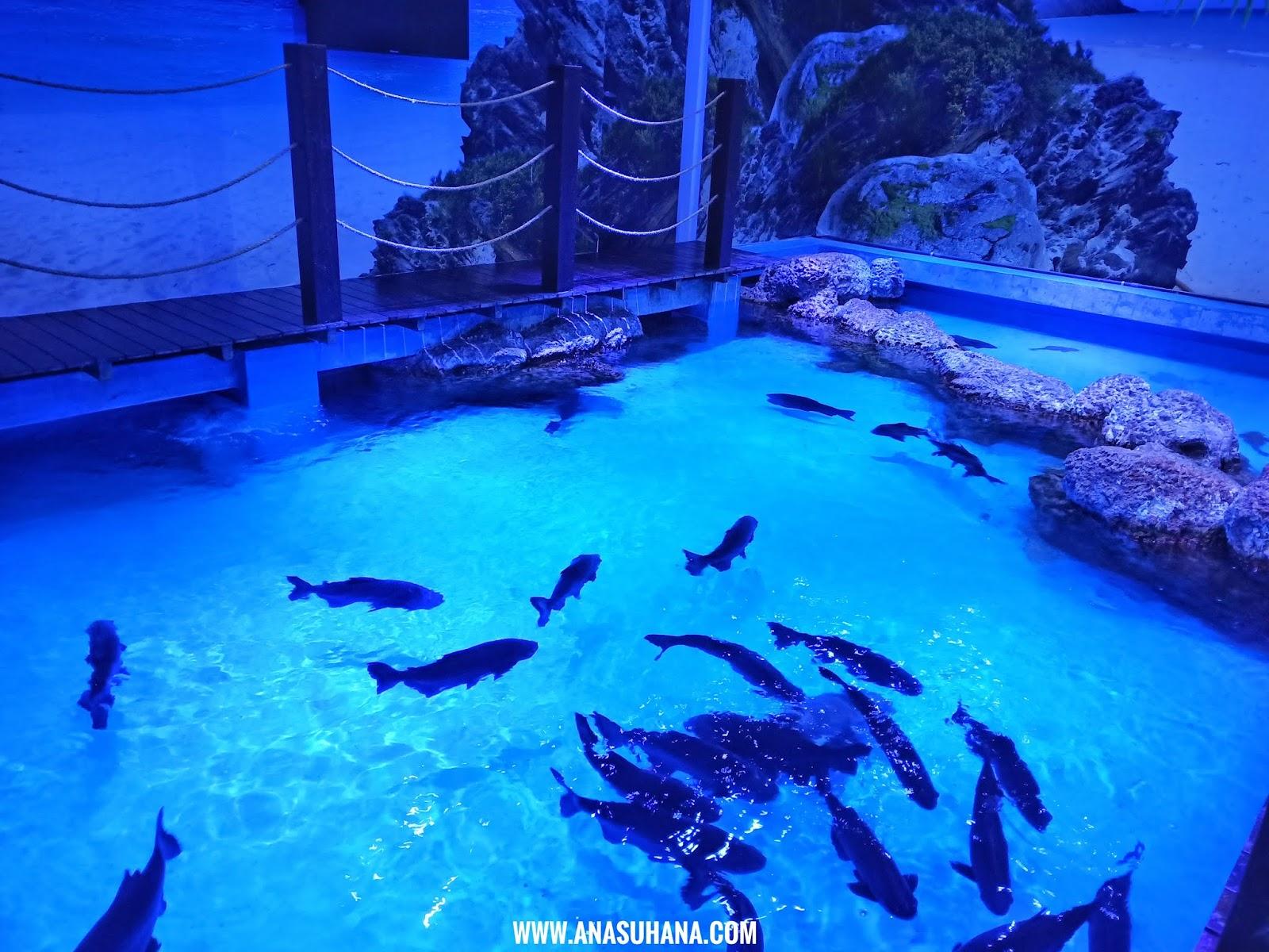 The Shore Oceanarium Melaka