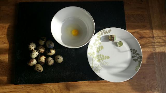 Kandungan dalam Telur Puyuh