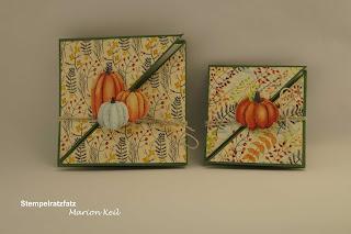 Diagonalfaltkarte Herbstimpressionen mit Stampin´ Up!
