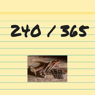 Spijkers op Laag water zoeken #240