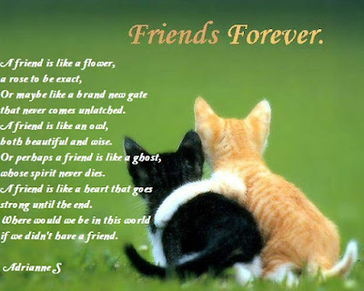 Happy Friendship Day Poems for Girlfriend in English