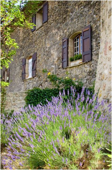 Home decor: #Frenchfarmhouse with lavender, stone facade, and purple shutters on Hello Lovely Studio #Provence #Frenchlavender