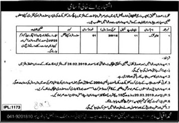 Junior Clerk Jobs in Ayub Agricultural Research Institute Faisalabad 2019